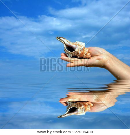 seashell in the woman hand over water