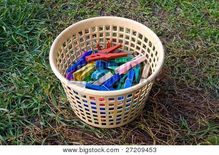 basket with clothespin on stay green grass