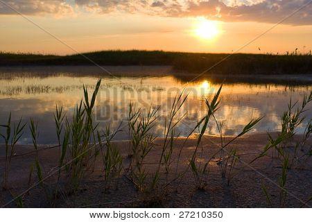 Evening landscape near river bank