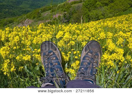 hikers boots on mountain meadow