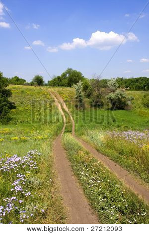 Countryside Road in nice summer day