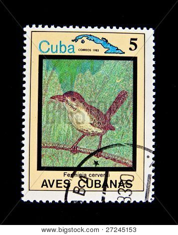 CUBA - CIRCA 1983: A stamp printed by Cuba shows tropical Bird , stamp is from the series, circa 1983.