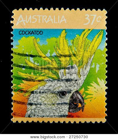 AUSTRALIA - CIRCA 1990s: stamp printed by Australia, shows Parrot cockatoo, circa 1990s.
