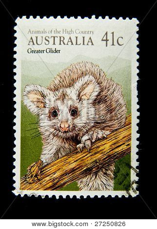 AUSTRALIA - CIRCA 1990s: A stamp printed in Australia shows image of a Greater Glider , series, circa 1990s