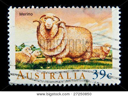 AUSTRALIA - CIRCA 1990s: A stamp printed in Australia shows image of Merino sheep, circa 1990s