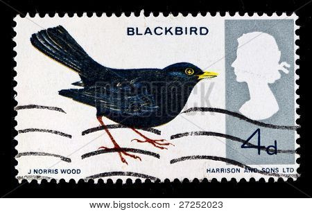 UK - CIRCA 1990s: A stamp printed in United Kingdom shows blackbird, circa 1990s