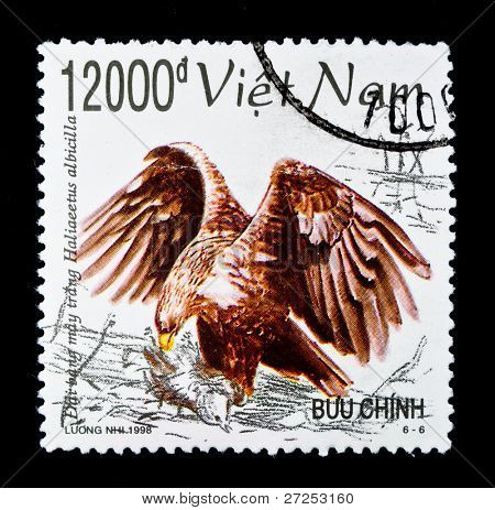 VIETNAM - CIRCA 1998: A stamp printed in Vietnam shows Lesser Fish Eagle - Ichthyophaga Nana, series, circa 1998