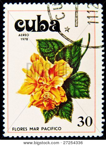 CUBA - CIRCA 1978: a stamp printed in Cuba shows image Tues flowers pacifist, series, circa 1978