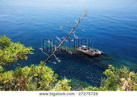 Ligurian coast at Manarola, Cinque Terre, Italy
