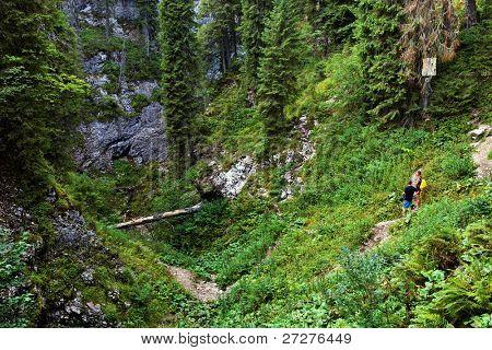 Tourists in the Occidental Carpathians, Radesei Cave, Romania