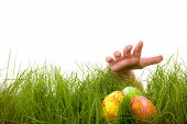 foto of easter-eggs  - Easter egg hunt - JPG