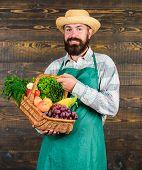 Fresh Organic Vegetables In Wicker Basket. Farmer Straw Hat Presenting Fresh Vegetables. Farmer With poster