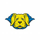 Mascot Style Illustration Of A Super Yellow Lab Labrador Retriever Dog Wearing A Blue Cape Viewed Fr poster