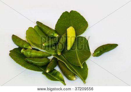 Kaffir Lime, Lemon Grass, Chili
