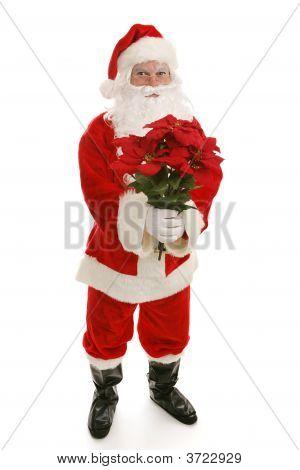 Santa With Poinsettias Full Body