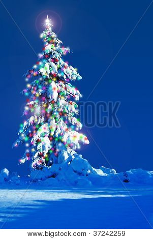 Snow covered Christmas tree outside at night.