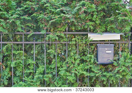 Mailbox On Green Background