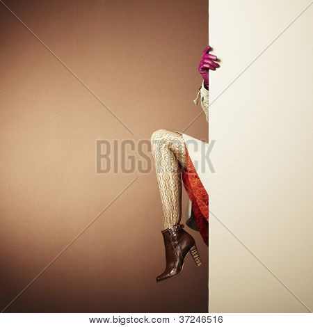 Picture Of Female Legs In The Interior