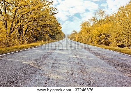 Autumn Road Going Far Away
