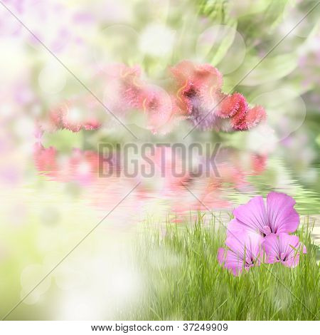 Green Grass With Beautyful Flowers