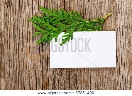 Wooden background with empty white card and green thuja branch