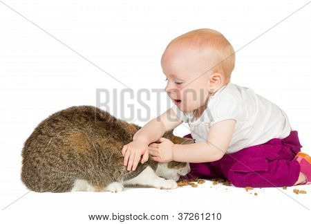 Young Baby With Family Cat