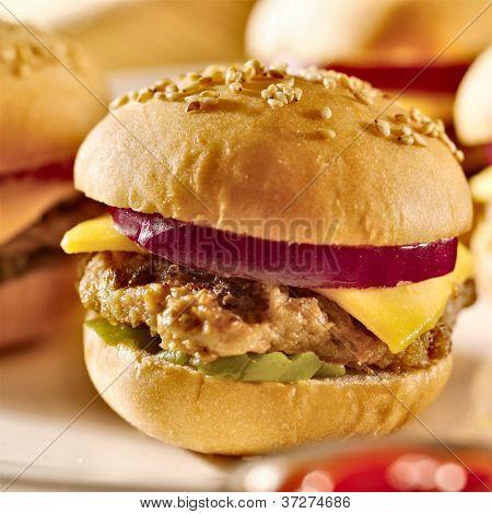cheeseburger platter closeup