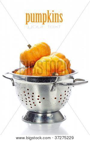 Harvested pumpkins in metal colander ovar white