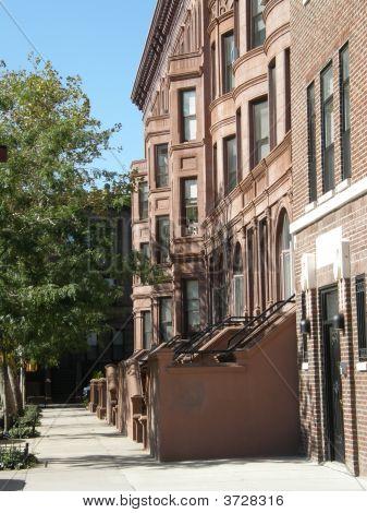 Harlem Houses