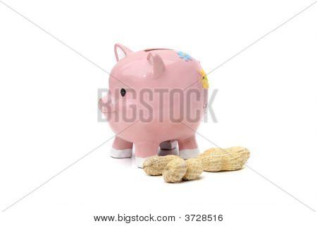 Saving Peanuts