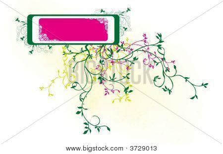 Congratulation Card Box 2