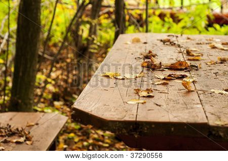 Table in the autumn forest