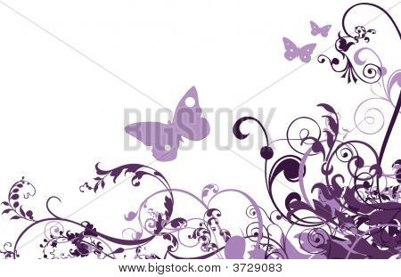 Congratulation Card Butterfly