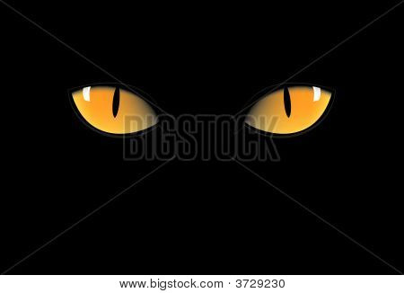 Yellow Cat Eyes