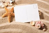 stock photo of bulrushes  - holiday beach concept with shells seastars and an blank postcard - JPG
