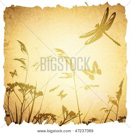 Vintage Summer Meadow Background