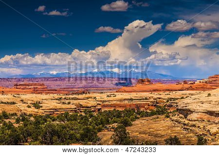 Needles District Canyonlads