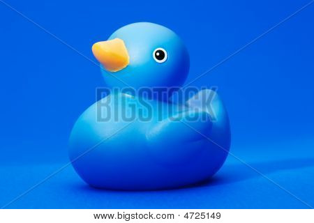Blue Rubber Duck On Blue Background
