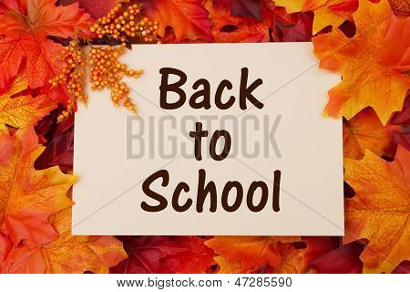 Back To School Card With Fall Leaves