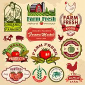 stock photo of farm  - Collection of vintage retro farm labels and design elements - JPG