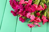 foto of carnations  - Bouquet of carnations - JPG