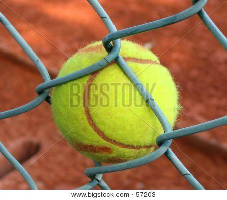 Stuck! -- Tennisball In Fence