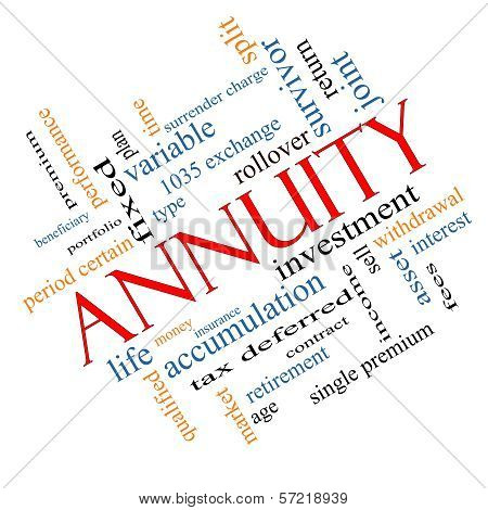 Annuity Word Cloud Concept Angled