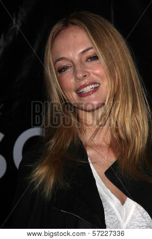 Heather Graham at the