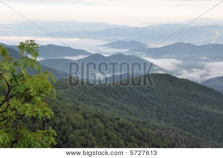 Blue Ridge Mountains Vista