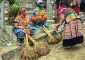 Hmong Women Selling Brooms On Sunday Market.
