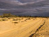 pic of semi-arid  - Sandy track on Calperum Station near Renmark in South Australia - JPG