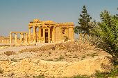 foto of zenobia  - Ancient temple ruins in Palmyra complex  - JPG