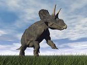stock photo of dinosaur  - Diceratops dinosaur running on the green grass with mouth open by cloudy day - JPG