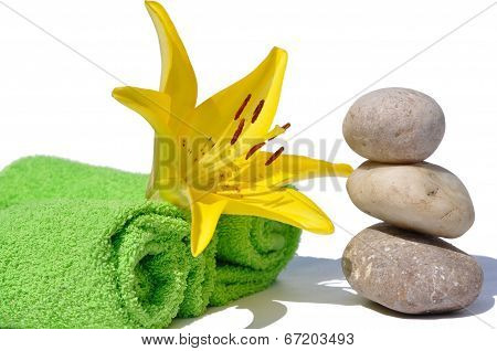 Yellow Lily And Stone